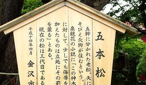 宝泉寺|北陸 近代文学の里を行く