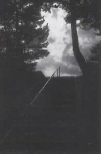 五本松に向かう宝泉寺の石段