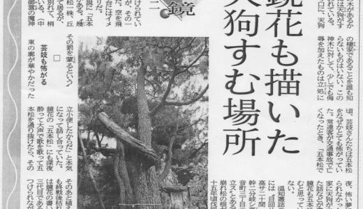 宝泉寺|鏡花も描いた天狗すむ場所、五本松
