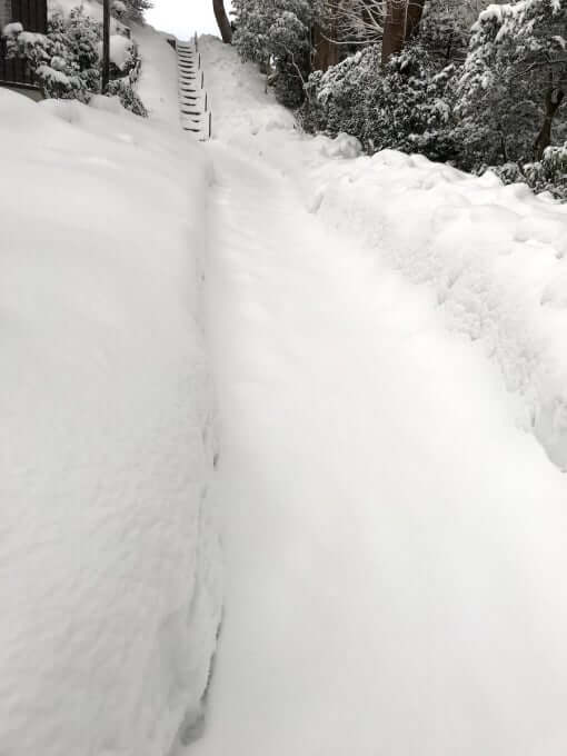 宝泉寺境内の積雪