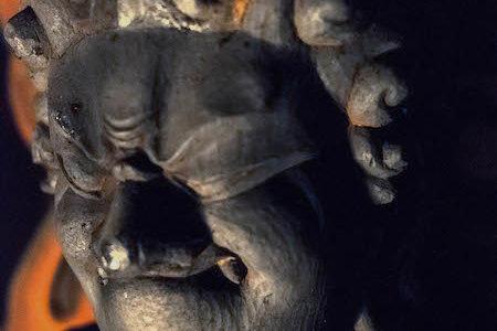 ほほえみ不動尊|宝泉寺の仏像