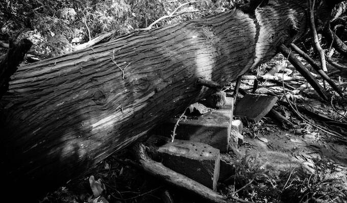 台風21号の爪痕「身代わりになったお地蔵さま」